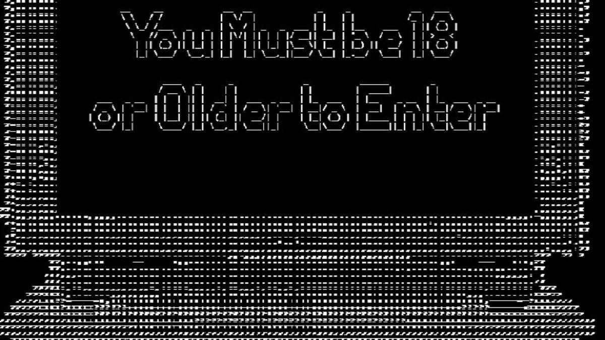 """Ein Screenshot des Titels von """"You Must Be 18 or Older to Enter""""."""