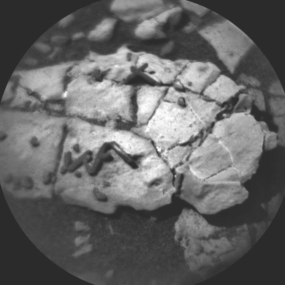 Dieses Bild könnte ein Fossil auf dem Mars zeigen.