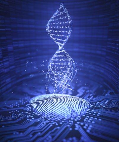 Vererbte Unterschiede in Genomsequenzen dienten als Grundlage für die gegenwärtigen Ergebnisse.