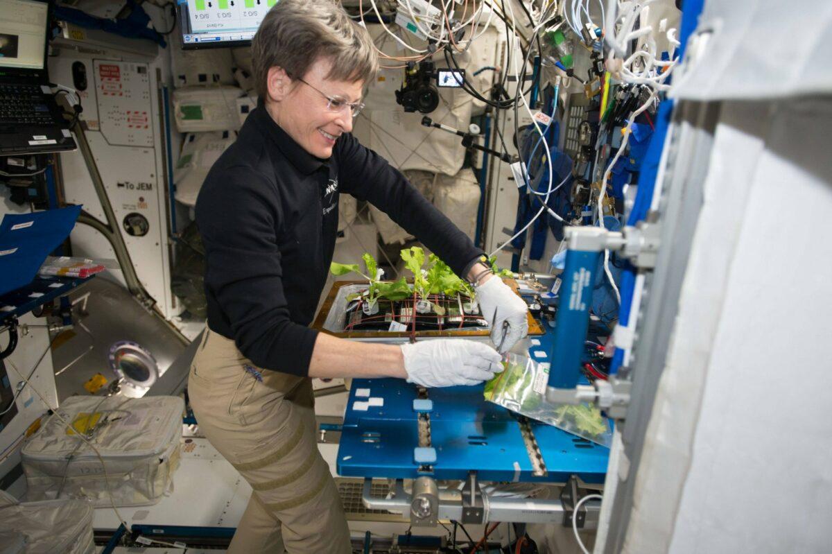 Astronautin mit Gemüsezucht