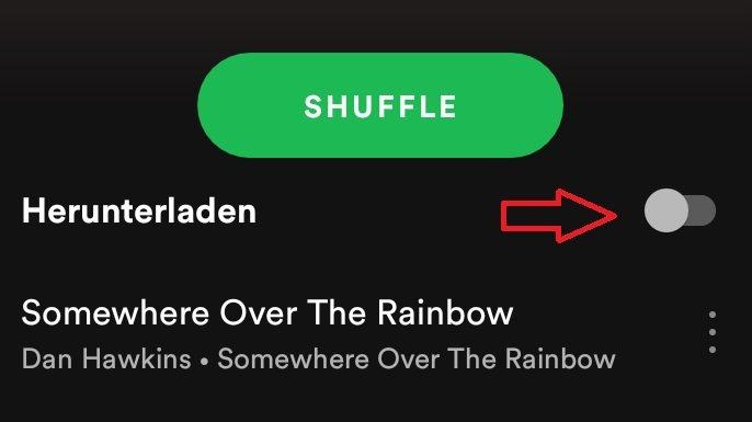 Lad in Spotify eine Playlist herunter