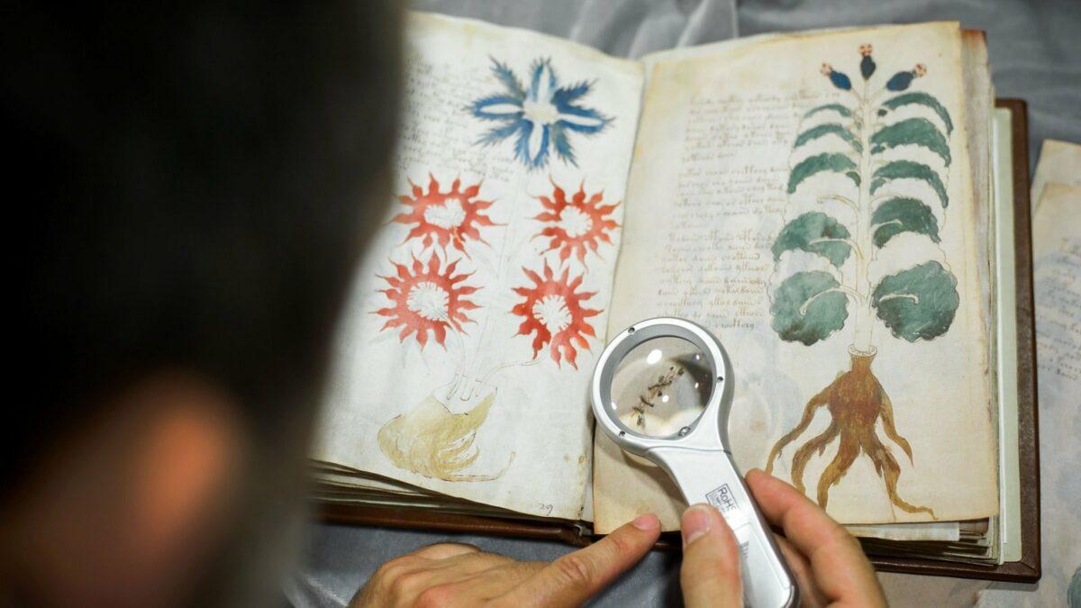 Foto des Voynich-Manuskripts