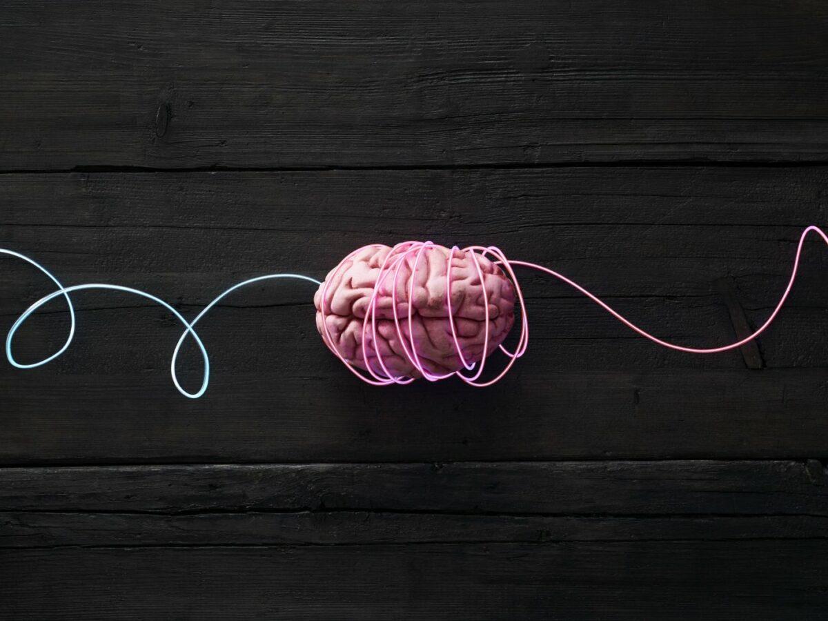 Gehirn mit Kabeln