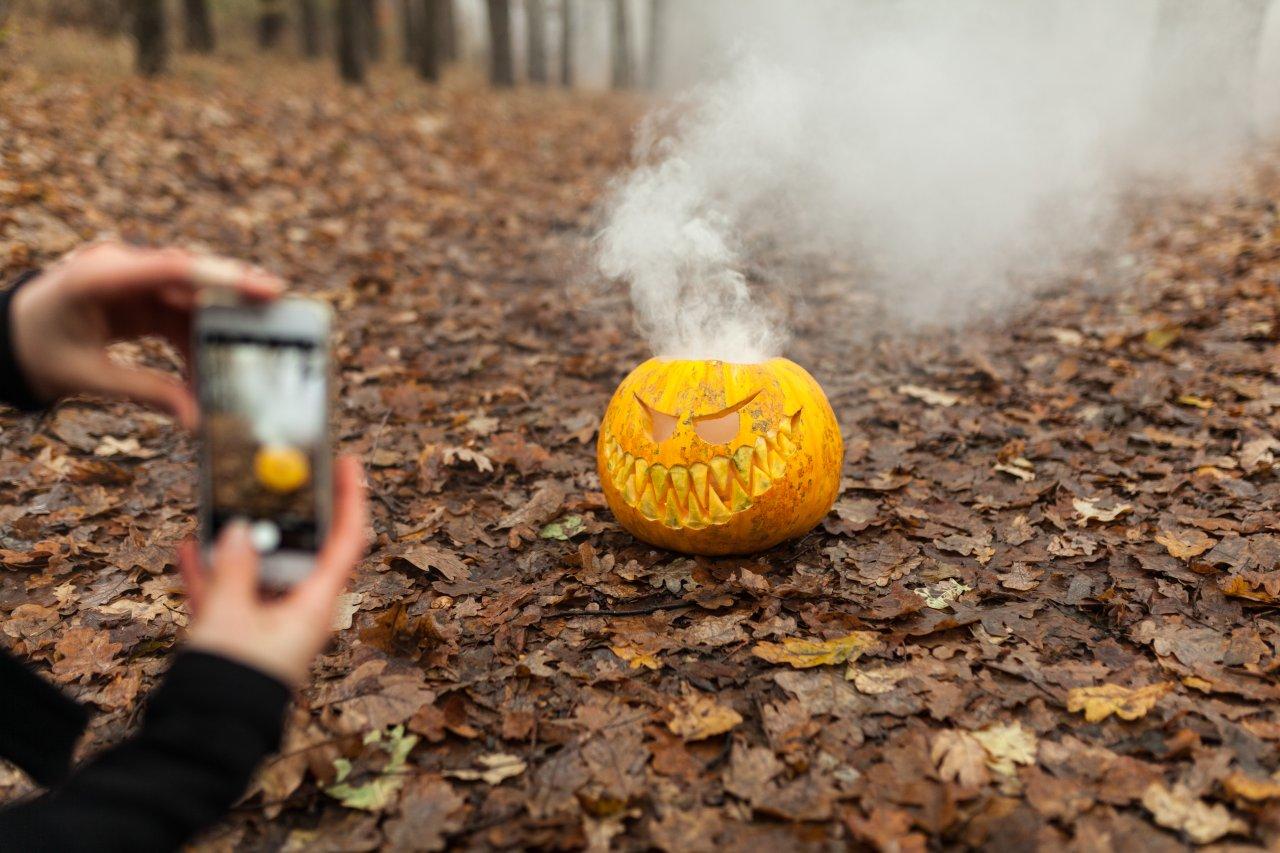 Ein cooles Motiv ist für ein gelungenes Herbstfoto wichtig – auch unsere Tipps machen einen besseren Handyfotografen aus dir.