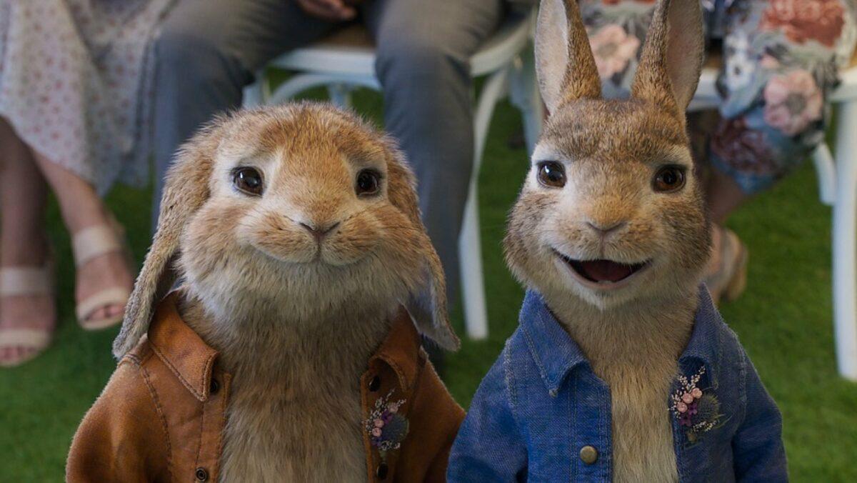 Filmszene aus Peter Rabbit 2.