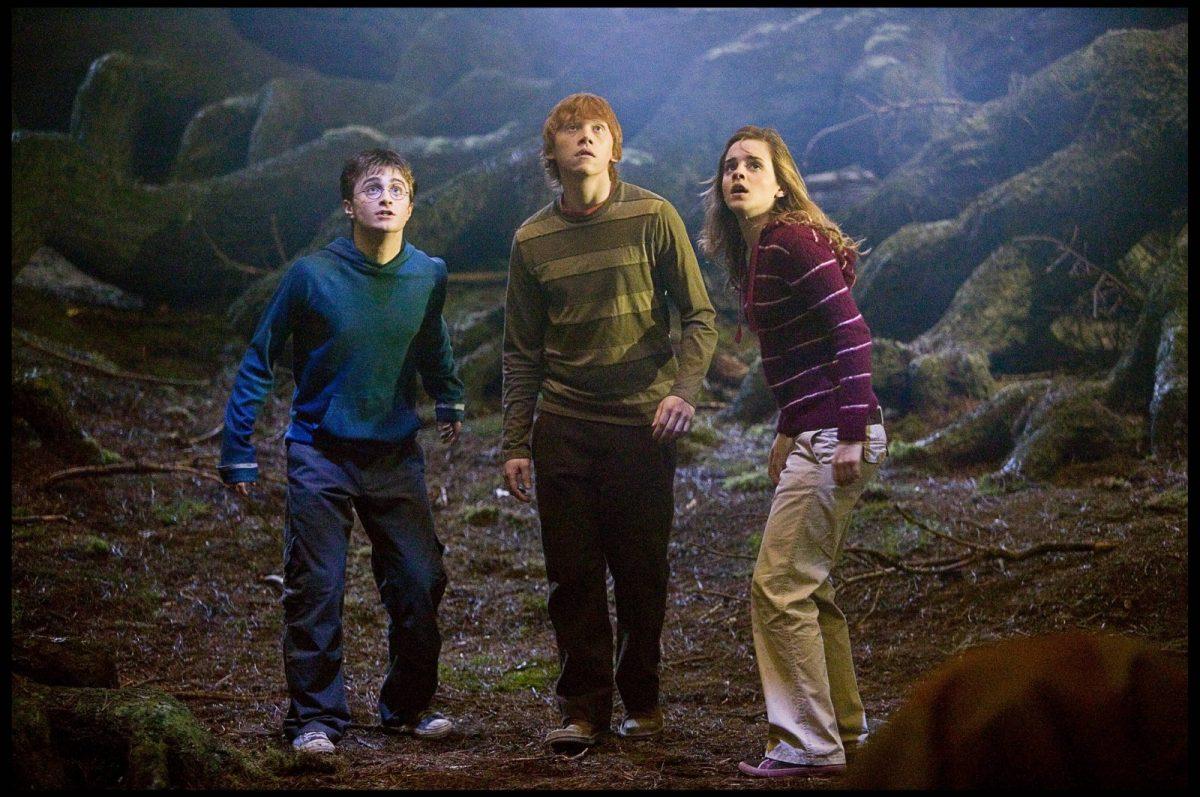 Harry Potter und seine Freunde Ron und Hermine.