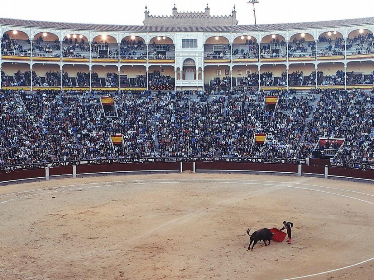 Eine Stierkampf-Arena. In der Mitte kämpfen ein Torero und ein Stier.