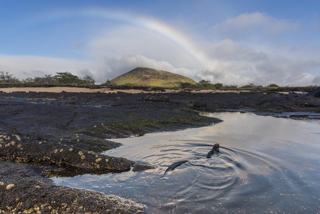Strand Galápagos