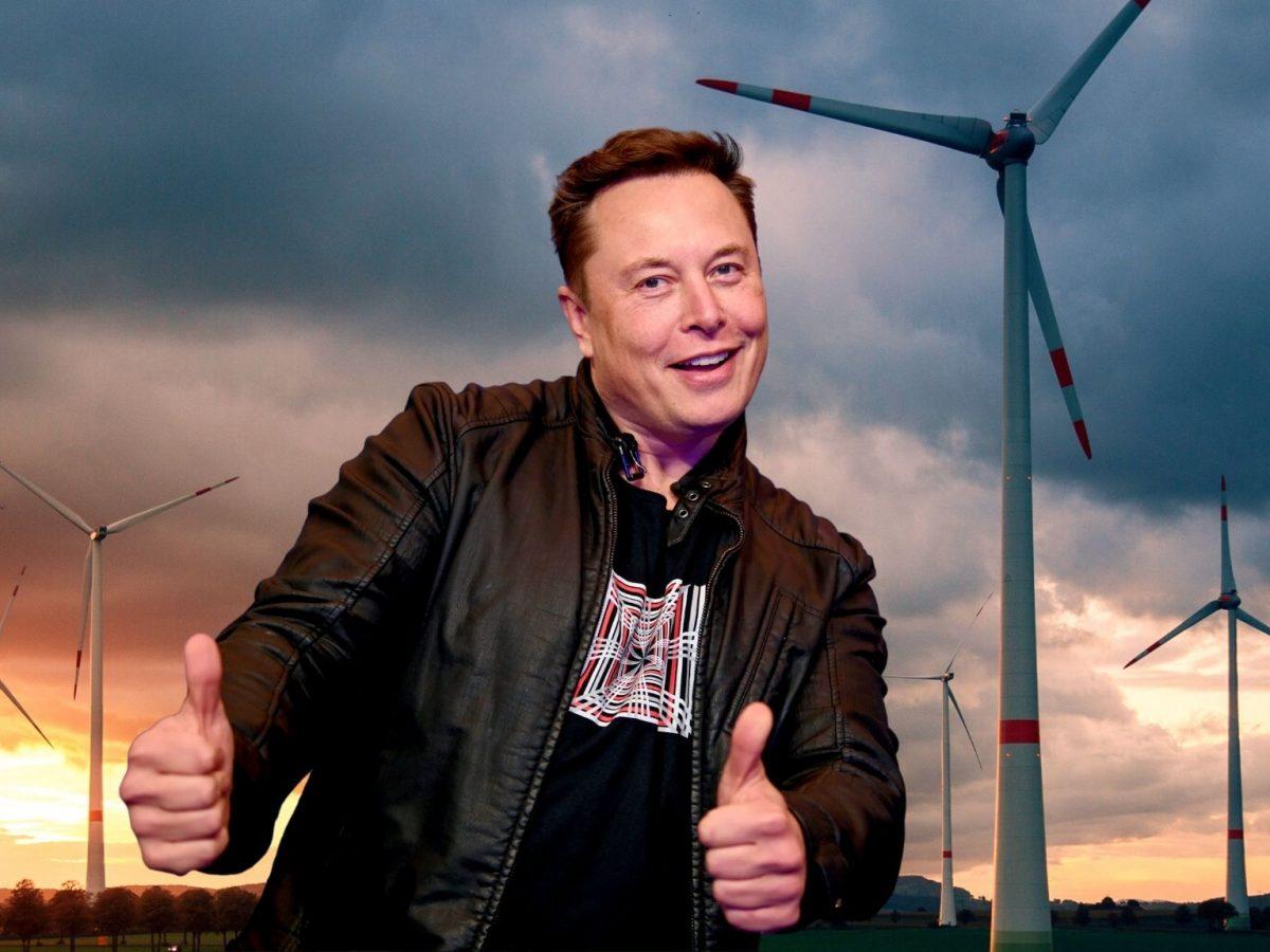 Elon Musk vor Windrädern